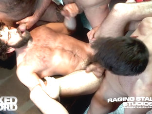 Three Wishes - Raging Stallion
