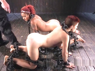 Two Bound Slaves Caned And Paddled