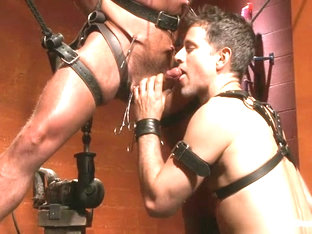 Dominic Pacifico in Bondage Hell