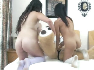 Lesbian Strap On Group First Time Bear Necessities