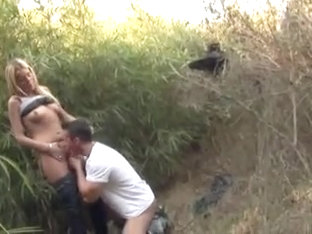 Fucking in the bushes
