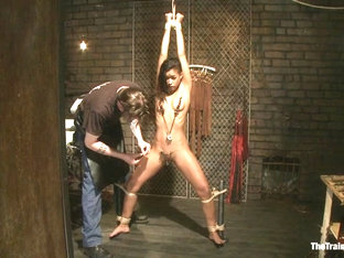 Skin Diamond Day OneSlave Ransom - TheTrainingofO